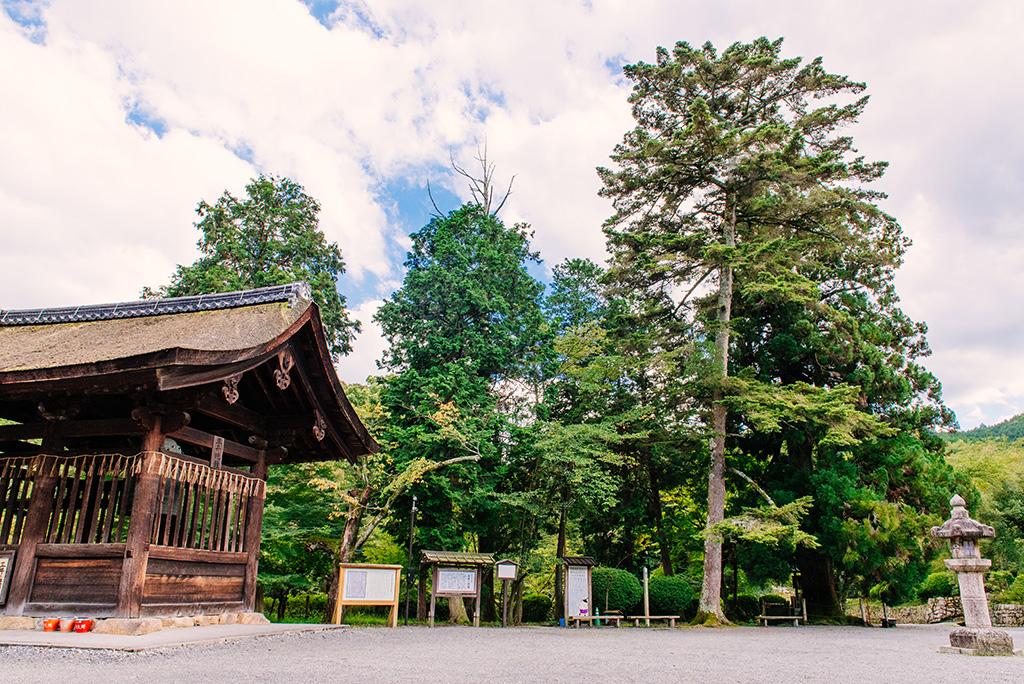 Shōrō (Miibanshō)
