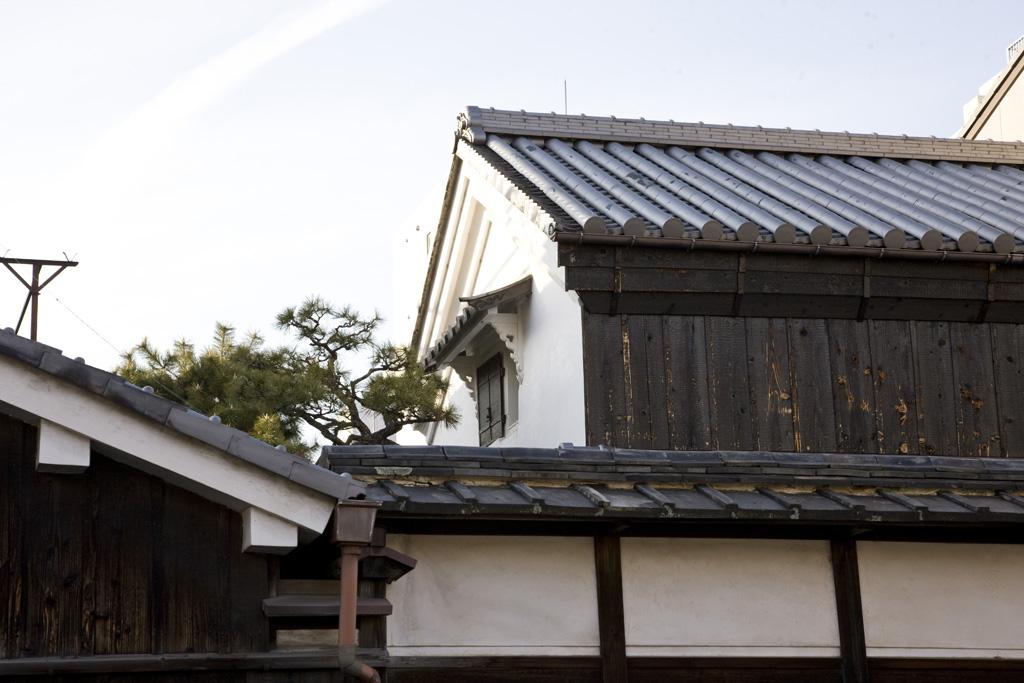 Hatsutakejyuutakudozou